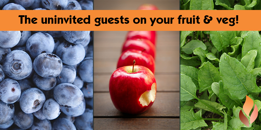 The uninvited guests on your fruit and veg!