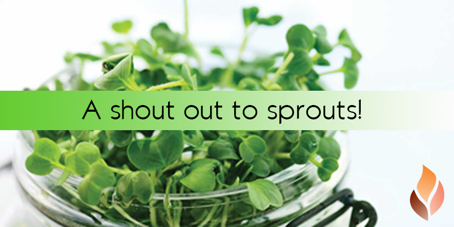 A shout out to SPROUTS!