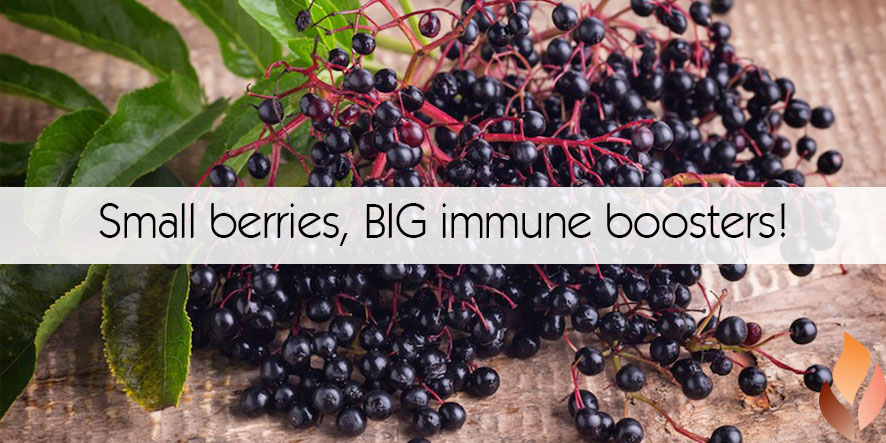 Small berries, BIG immune boosters!