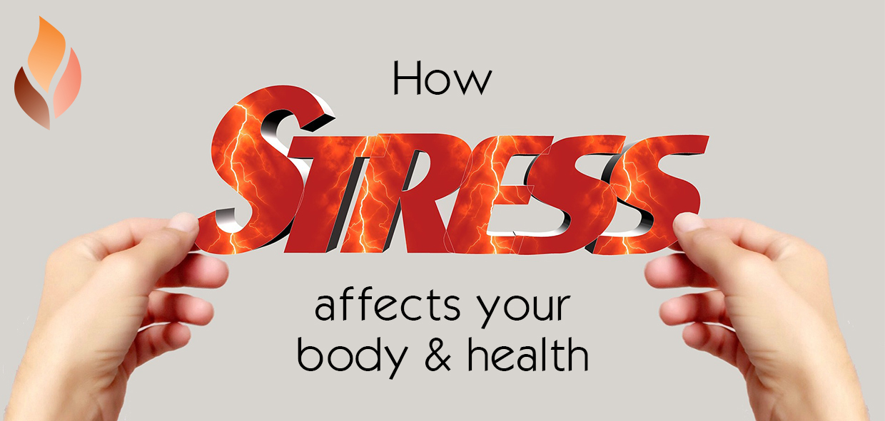 How Stress Affects your Body & Health